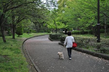 GW-平塚総合公園1