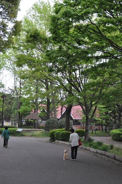 GW-平塚総合公園(止まれ)