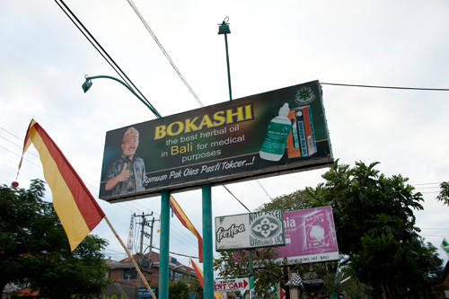bokashi12_DSC1009.jpg
