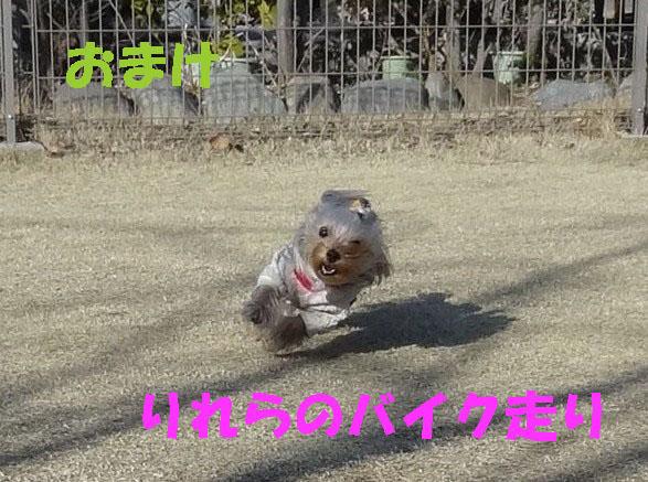 10_20120330043826.jpg