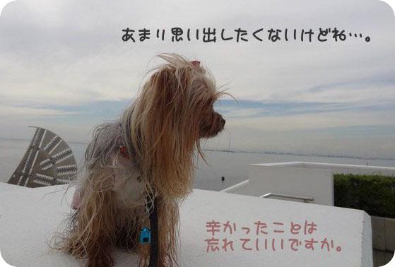 24日1海ほたる (1)