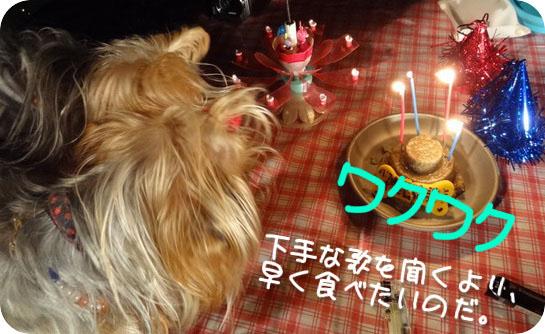 24日6ぱこ誕パーティー (4)arr