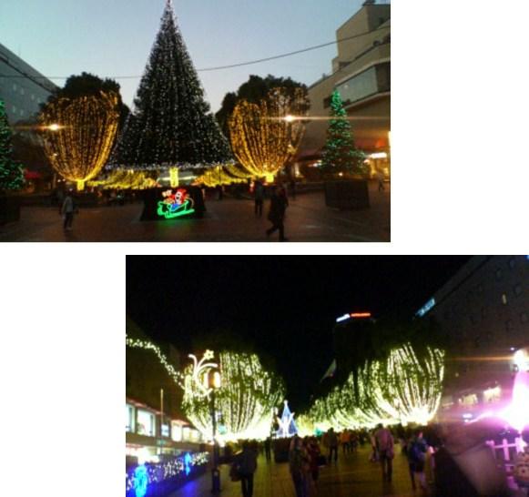 2_20121117074550.jpg