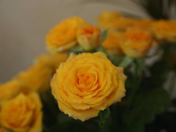 2012_0526_154451-P5263835_convert_20120528181819.jpg