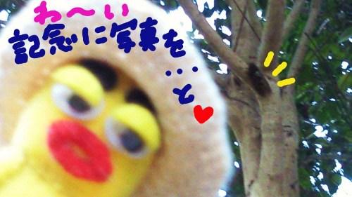 2011年夏の思い出5☆