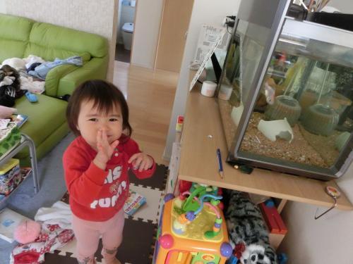 CIMG0591_convert_20121016154205.jpg