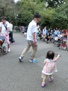 動物園 歩き