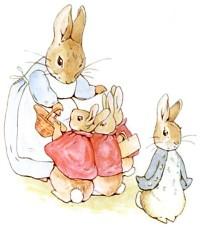rabbit_20.jpg
