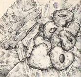 おからのクッキー図