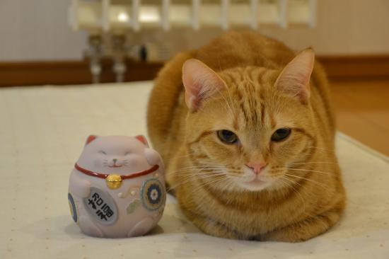 リンリンと招き猫