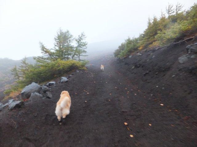 2013-10-7富士宮口コース 005