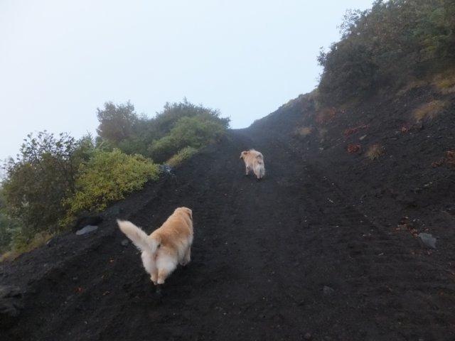 2013-10-7富士宮口コース 007