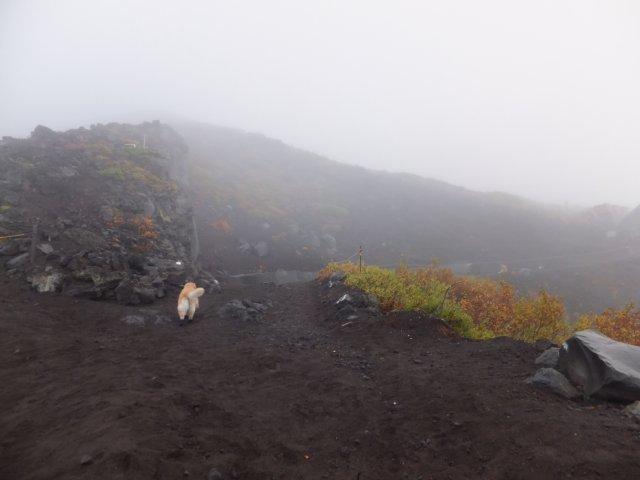 2013-10-7富士宮口コース 013
