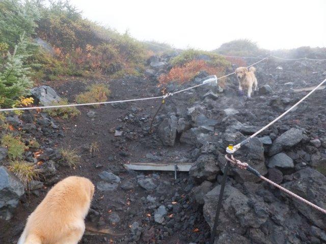 2013-10-7富士宮口コース 026