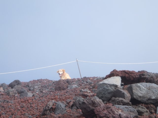 2013-10-7富士宮口コース 136