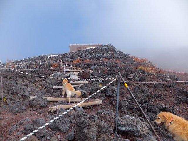 2013-10-7富士宮口コース 156