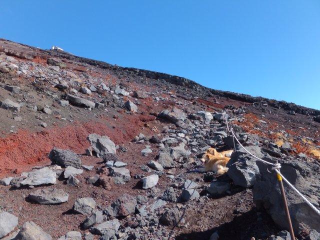 2013-10-7富士宮口コース 169