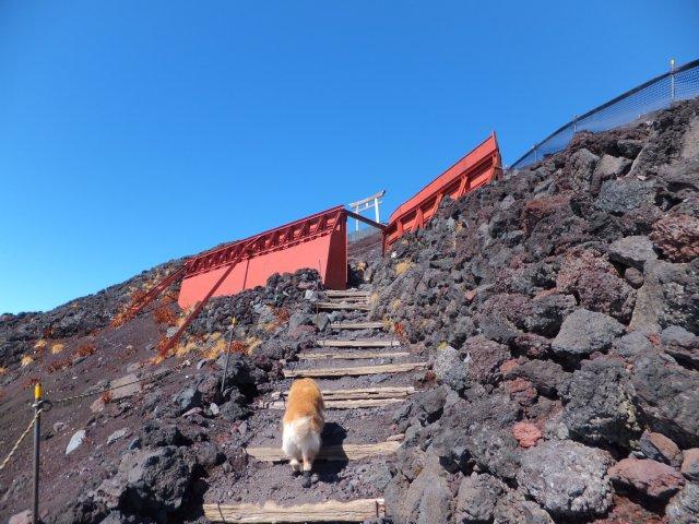 2013-10-7富士宮口コース 219