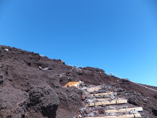 2013-10-7富士宮口コース 257