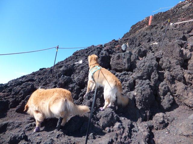 2013-10-7富士宮口コース 271
