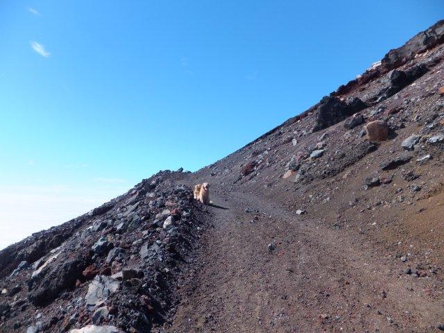 2013-10-7富士宮口コース 299