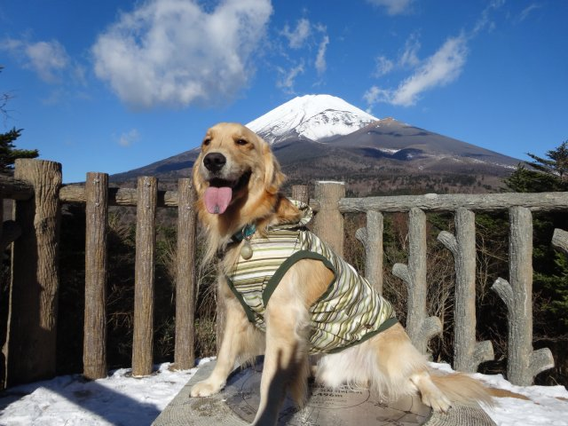 富士山2014.12.9 008
