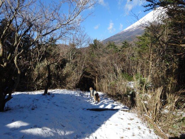 富士山2014.12.9 011