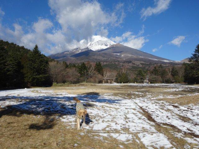 富士山2014.12.9 021