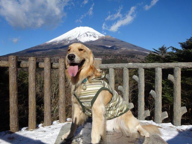 富士山2014.12.9 010