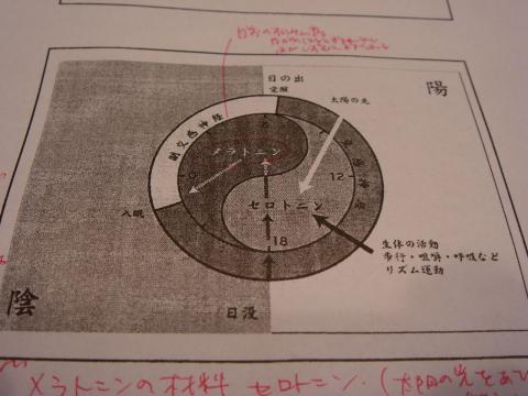 DSC08638_R.jpg