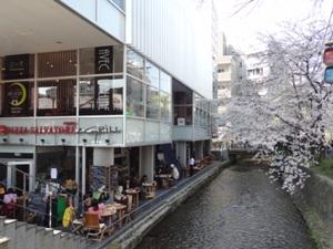 ピッツァ サルヴァトーレ クオモ アンド グリル 京都 のお店の雰囲気