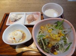 サラダ、スープ、自家製豆腐、前菜の盛り合わせのセット