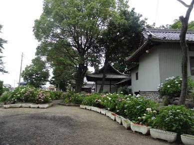 琴聲山音楽寺1