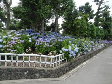 大塚性海寺3