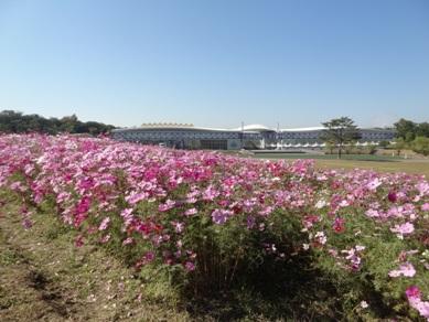 愛・地球博公園5