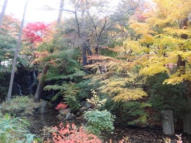 久保田一竹美術館の庭園