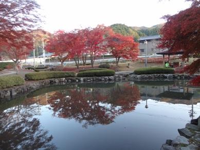 曽木公園5