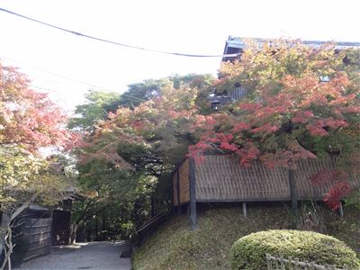 お茶屋屋敷跡6