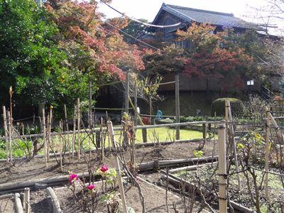 のお茶屋屋敷跡4