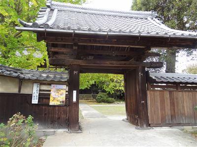 祖父江町の銀杏8