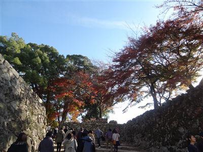 彦根城 石段
