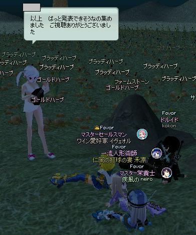 mabinogi_2013_10_04_022.jpg