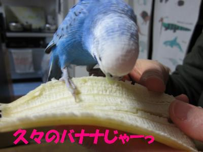 久々のバナナじゃーっ