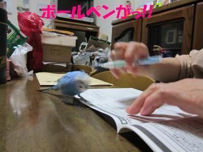 ボールペンがっ!!