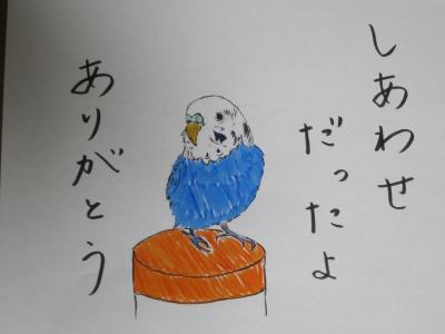 ピナ☆さんからのイラスト②