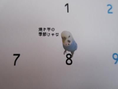 上様カレンダー 11月