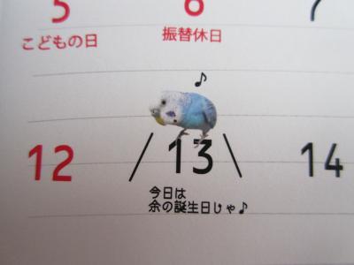 上様カレンダー5月