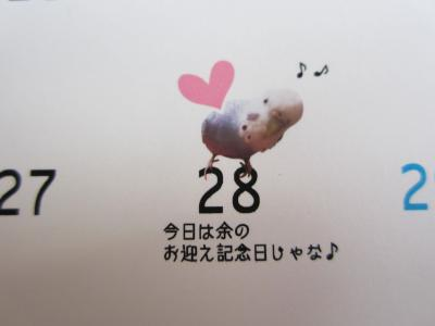 上様カレンダー6月