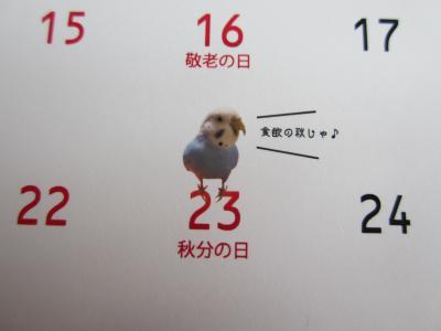 上様カレンダー 9月