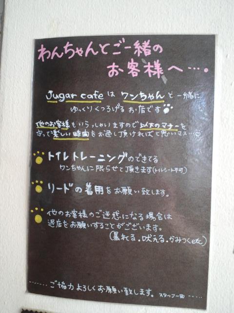 CA3J0479.jpg